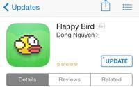 Flappy Bird và chuyện 'chơi chim'
