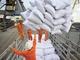 Xuất khẩu nông sản 2013: Nhiều mặt hàng tỷ đô