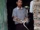 Làng rắn Vĩnh Sơn: Nông dân kiếm bạc tỷ mỗi năm nhờ rắn hổ mang