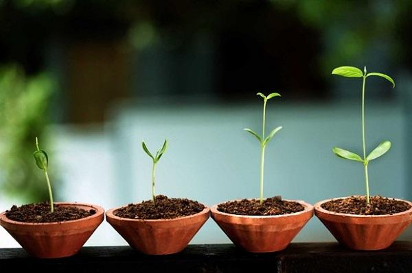3 lỗi khiến doanh nghiệp startup không được nhà đầu tư cấp vốn