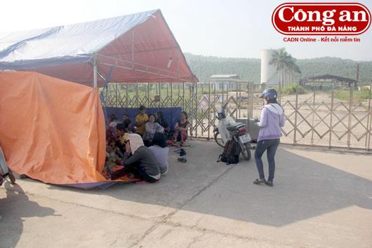 Những thương lái và người dân trồng sắn dựng lều trước cổng nhà máy cồn suốt những ngày qua để gây sức ép đòi nợ.