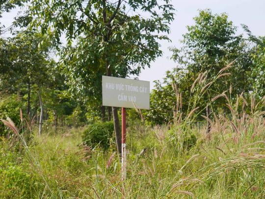Trong giai đoạn từ năm 2001- 2006, khâu giải phóng mặt bằng đã thực hiện xong nhưng từ đó cho đến nay, ngoài 1 số tuyến đường nội bộ được hình thành thì các công trình khác đều dậm chân tại chỗ. Công viên dần bị bỏ hoang, cỏ mọc cao quá đầu.