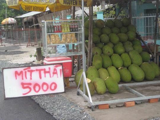 Giá mít Thái rớt thê thảm