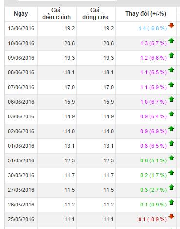VNG có chuỗi tăng trần 8 phiên liên tiếp từ ngày 1/6 đến 10/6