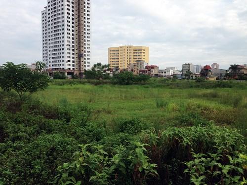 Hiện tại Nam Cường vẫn chưa có động thái gì để triển khai đại dự án này.