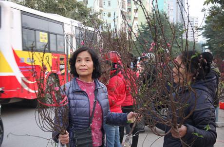 Ở chợ hoa trên đường Hoàng Minh Giám, giá đào giảm từ 120.000 đồng xuống 80.000 - 90.000 đồng.