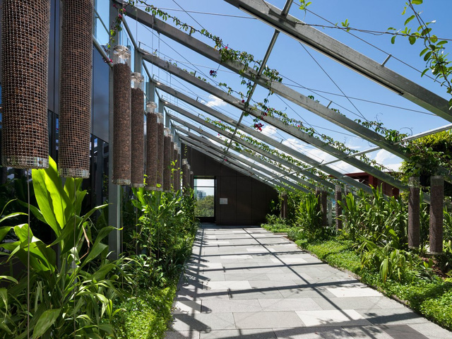 Nói về kiến trúc xanh kiểu tán lá, không một công trình nào có thể xanh hơn tòa nhà Bosco Verticale hay còn được gọi với một tên khác là Rừng thẳng đứng. Công trình này tọa lạc tại TP. Milan, Ý và hoàn thành vào giữa năm 2015.