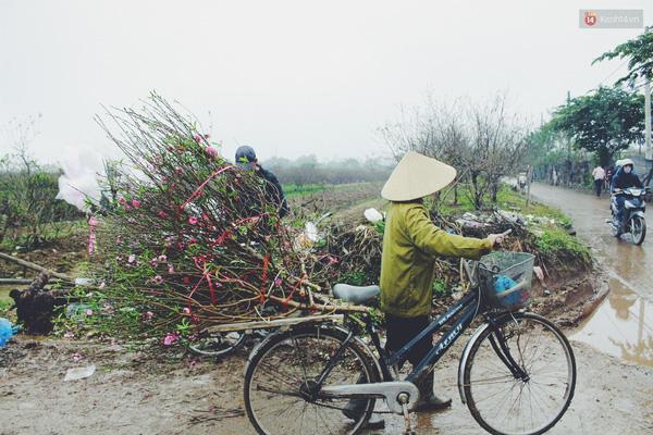 Nhiều nông dân chở hoa lên chợ Quảng Bá bán lẻ.