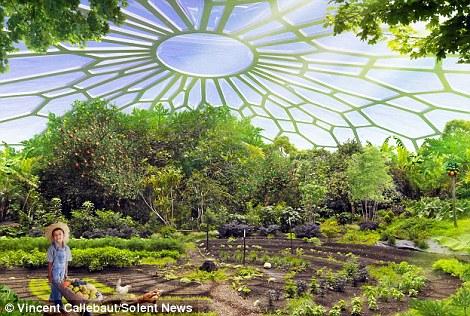 Trên tầng thượng của các tòa nhà sẽ là nơi trồng trọt các loại cây nông sản và cây ăn quả, cây họ đậu