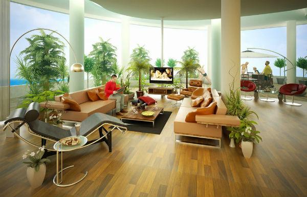 Cây trong phòng khách giúp thanh lọc không khí cho ngôi nhà