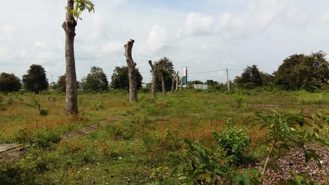 Khu đô thị Long Kim do không được tiếp tục đầu tư nên bắt đầu hoang hóa.