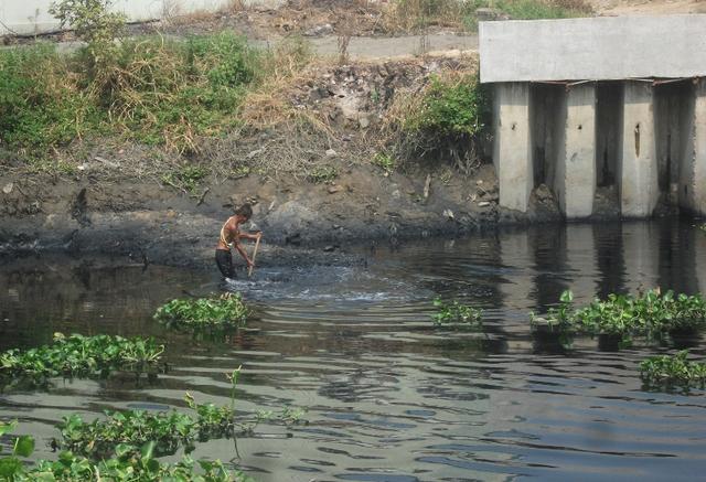 Hàng ngày, trong dòng nước đen bẩn thỉu và hôi thối này, nhiều người dân vẫn phải mưu sinh bằng cách vớt bèo bán cho những hộ chăn nuôi heo. Khi đi ngang qua con kênh này, mọi người đều phải nín thở...