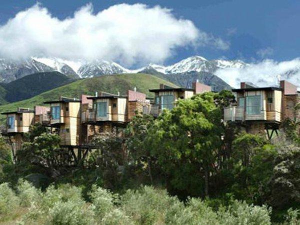 Những khách sạn trên cây độc đáo nhất thế giới