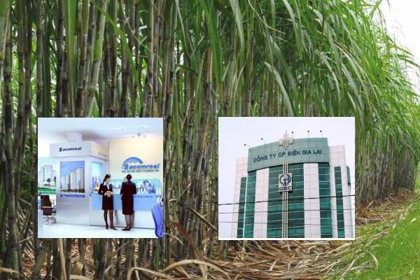 Chia tay Sacombank, gia đình ông Đặng Văn Thành còn lại gì?