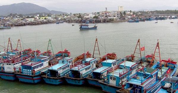 Đề xuất 'nhập tàu cũ' bị Bộ NN&PTNT bác: Đại gia sẽ sang... Indonesia đầu tư!