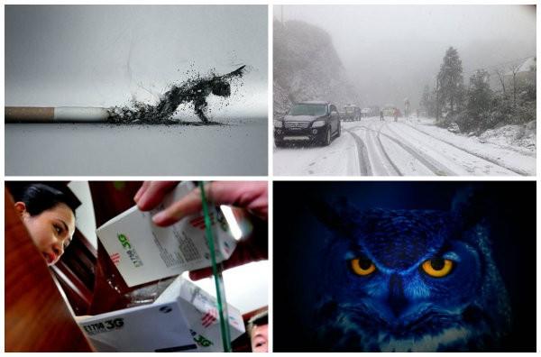 [Nổi bật]Sapa thiệt hại nặng do tuyết, Bước đi thay đổi toàn ngành thuốc lá Việt Nam