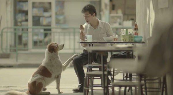 Bật khóc sau 3 phút xem quảng cáo của hãng bảo hiểm Thái Lan