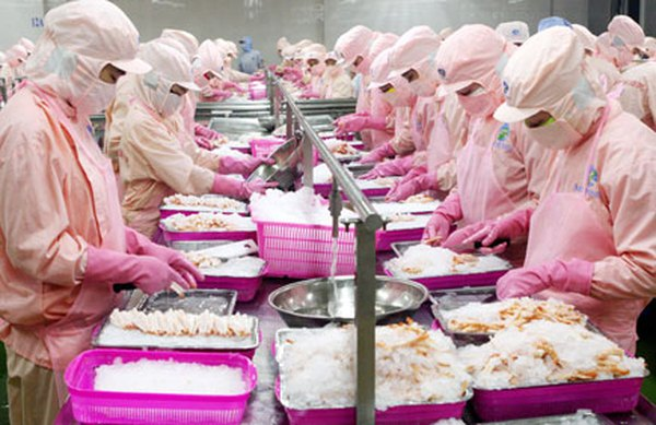 Tập đoàn Mitsui của Nhật đầu tư vào công ty con của Thủy sản Minh Phú