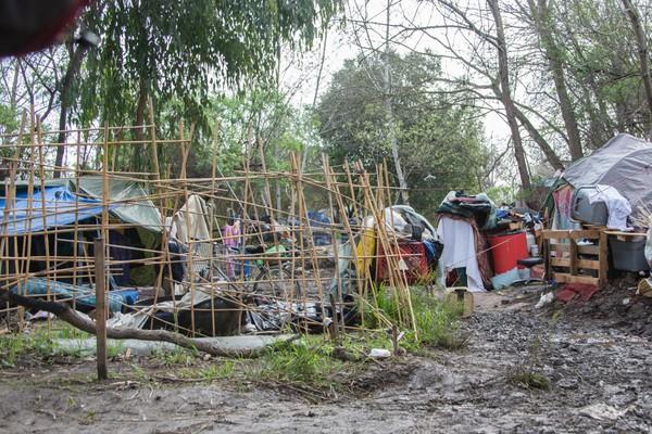 Đây cũng là thời gian áp lực đóng cửa các trại vùng The Jungle. Chính quyền liên bang vừa gửi đơn kiện tới San Jose vào ngày 20/3/2014 về việc thành phố này cho phép cư dân duy trì The Jungle khiến ng