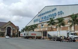 Công ty thủy sản Bình An nợ tiền thuê đất trên 1 triệu USD