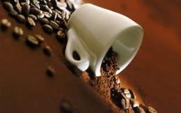 Ngồi Coffee Bean, nghĩ về thương hiệu