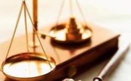 Khởi tố vụ án chiếm đoạt tài sản tại Công ty Cổ phần xi măng Hà Giang