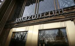 Nhiều nhà cung cấp tẩy chay Amazon
