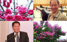 [Nổi bật] Masan ngắt bớt hoa, nghỉ Tết dài 9 ngày