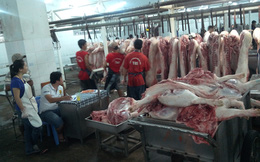 Cận cảnh 'sàn' giao dịch thịt heo lớn nhất Sài Gòn