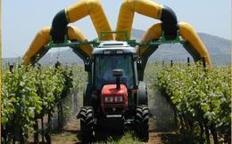 Làm nông nghiệp kiểu Israel