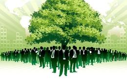 Luật quy định thế nào về trách nhiệm bảo vệ môi trường của doanh nghiệp?