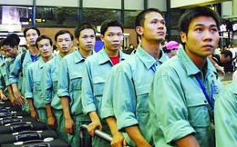 Doanh nghiệp đưa người Việt sang làm việc trái phép ở nước ngoài bị xử lý thế nào?
