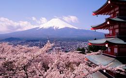 Nhật Bản ồ ạt rút vốn khỏi Trung Quốc, chuyển hướng sang Việt Nam và Đông Nam Á
