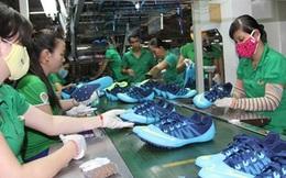 Doanh nghiệp nào đang phụ thuộc nhiều vào Trung Quốc?