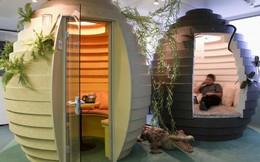 Những văn phòng làm việc 'đẹp như mơ' bất cứ nhân viên nào cũng khao khát (P1)