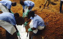 Thuốc thử nghiệm chữa Ebola gây tranh cãi