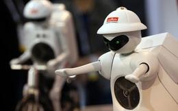 Tương lai robot sẽ 'cướp' hết việc làm của con người