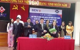 Tập đoàn Xuân Thành của bầu Thụy vay BIDV gần 2.000 tỷ đồng xây nhà máy xi măng