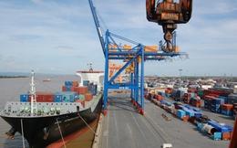 """Vận tải biển lỗ lớn, cảng biển vẫn """"lãi khủng"""""""