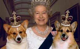 Elizabeth II- Nữ hoàng của 16 quốc gia
