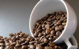 Cà phê Việt Nam: Có tiếng mà không có miếng