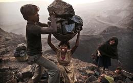 Ấn Độ: Vàng đen cũng nhuốm máu