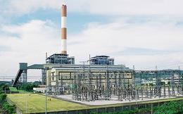 REE muốn 'gom' thêm cổ phần của Nhiệt điện Phả Lại