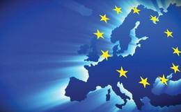 Doanh nghiệp châu Âu ngại luật Việt Nam