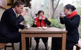 Thủ tướng Anh 'đi buôn' lợn