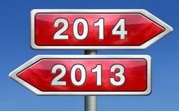 Những doanh nhân đình đám nhất năm 2013: Họ đã làm gì?