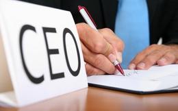 Thuê CEO: Ta thuê ngoại, ngoại thuê ta