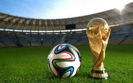 Nếu VTV cũng không mua, bản quyền World Cup 2014 có thể BIẾU KHÔNG