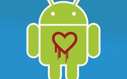 Hàng triệu người dùng Android vẫn gặp nguy hiểm vì Heartbleed