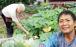 Bà 'rau Việt' ở thủ đô Washington, Mỹ